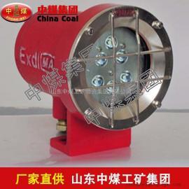 DGY9/24H矿用隔爆型信号灯,矿用隔爆型信号灯报价低