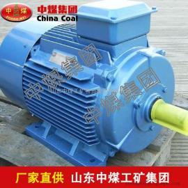 YB2D系列变极多速三相异步电机,变极多速三相异步电机