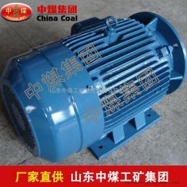 YB400-450系列三相异步电机,三相异步电机生产商