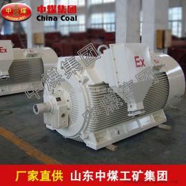 YB560-800系列三相异步电机,三相异步电机特点
