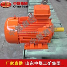 YFB系列粉尘防爆三相异步电动机,粉尘防爆三相异步电动机