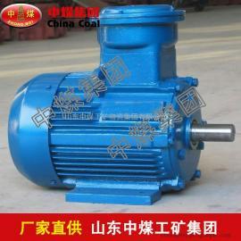 YB2系列隔爆型三相异步电机,供应隔爆型三相异步电机