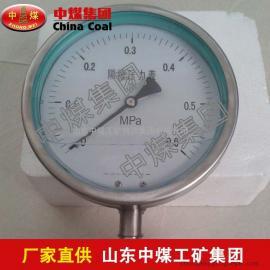 YMN系列隔膜式耐振压力表,隔膜式耐振压力表