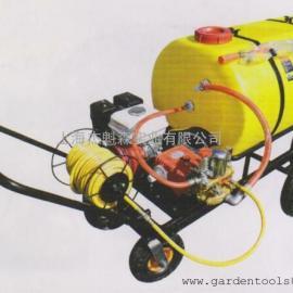 美神LYD45C2T30XH1手推式机动喷雾器 园林喷雾器