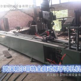 厂家直销帕尔菲特梯子零部件自动送料冲孔机