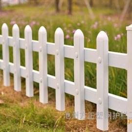 PVC草坪护栏花园护栏 公园护栏 绿化带护栏 花坛围栏