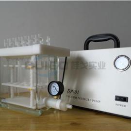 SPE固相萃取装置/固相萃取仪GGQSE-12
