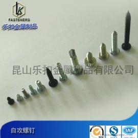 厂家直销不锈钢自攻钉/非标定做碳钢自攻螺丝