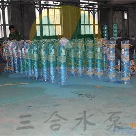 不锈钢高扬程潜水泵-高扬程井用潜水泵品牌