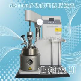 MS100多功能可视反应釜-世纪森朗华东办事处