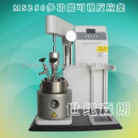 华东办事处-世纪森朗250ML多功能高压反应釜
