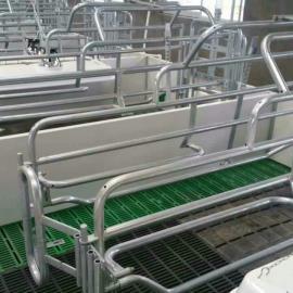 欧式母猪分娩床可调节热镀锌焊接2.5国标管新型母猪产床