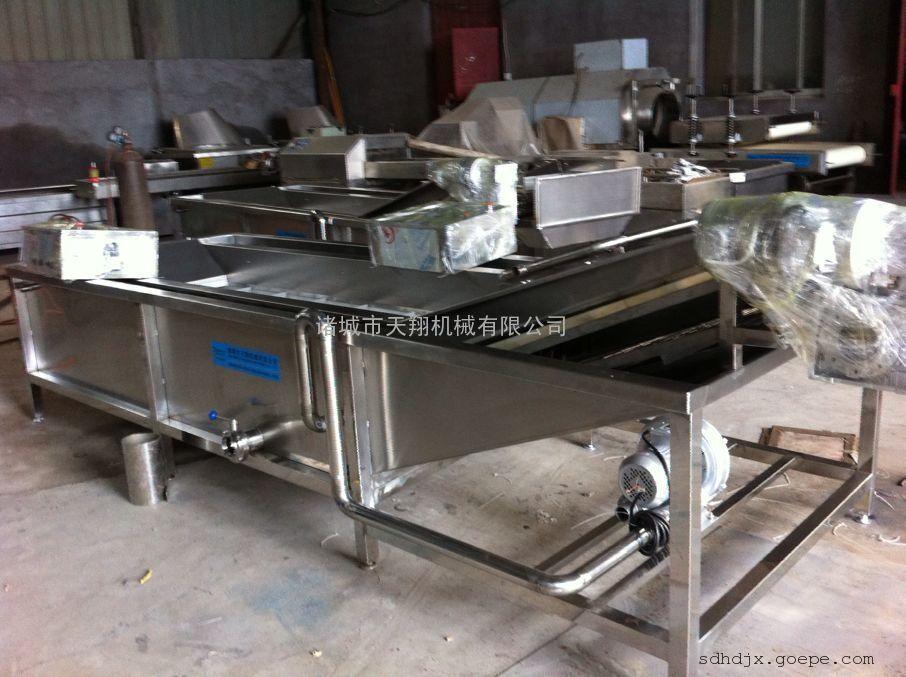 供应蔬菜除杂机 翻浪式黄瓜清洗机 毛辊式根茎类蔬菜清洗机