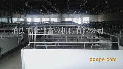 大型猪场安装欧式母猪双体产床优势介绍