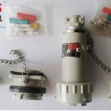 60A无火花防爆插头插座连接器(3芯、4芯、5芯)
