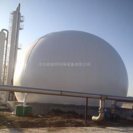 600立方双膜气柜 沼气气柜 气柜 青岛超威特环保