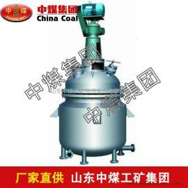 电加热反应釜,电加热反应釜报价,优质电加热反应釜