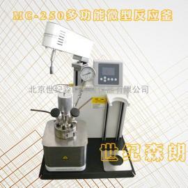 华东办事处-世纪森朗MC250多功能反应釜