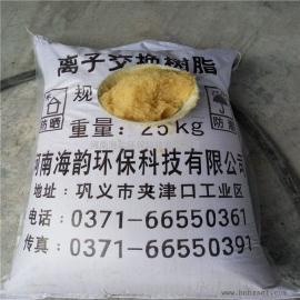 强酸性阴离子交换树脂的应用,阴离子交换树脂厂家
