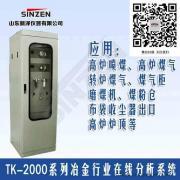 高炉喷煤气体分析系统,冶金喷煤气体分析仪