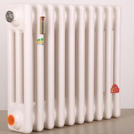 钢制圆管散热器 暖气片家用 钢二柱暖气片