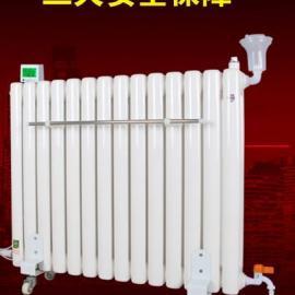 钢制电暖气片散热器直供 取暖器家用