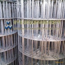 安平热镀锌电焊网厂家