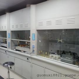 广东实验室净化工程家具系列通风柜