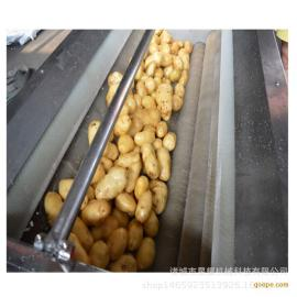 全自动毛辊去皮清洗机 土豆 大枣 芋头清洗机厂家