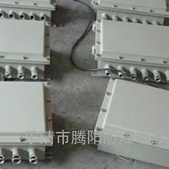 BXJ51-20/12威尼克斯不锈钢防爆基业箱接线端子箱