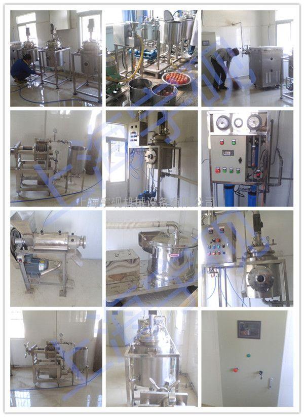 小型实验室果汁饮料生产线