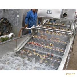 厂家直销全自动高压水流 气泡清洗机 生菜 大枣 洗菜机