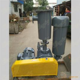 龙铁罗茨真空泵LTV-250 龙铁真空泵