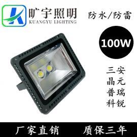 LED投射灯100W厂家直销