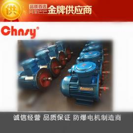 防爆电机专业生产厂家YB3(63~315机座/0.18~90kw-2-4-6-8级)