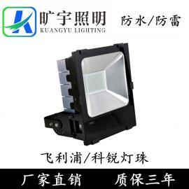 鳍片散热黑色高品质LED投光灯