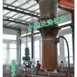 中德天浩QSZ型大流量排灌水泵中吸潜水轴流泵型号参数