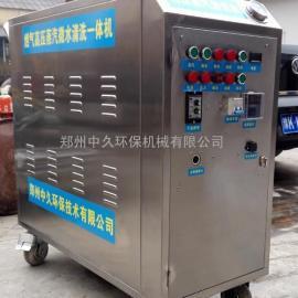 双枪蒸汽洗车机 高压移动洗车设备