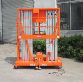 12米双柱式液压升降梯,电动升降机,