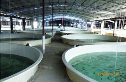 海水养殖水处理系统设备