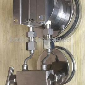 DZHF-1组合型液位计,天津差压计