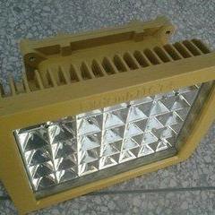 BTD97-100W大型场地专用大功率LED防爆投光灯