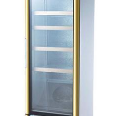 冰之乐单门酸奶机