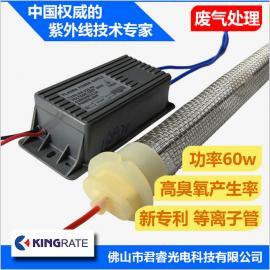 君睿厂家生产60w高臭氧有机废气处理净化低温等离子管