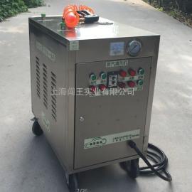 蒸汽清洗机电加热式