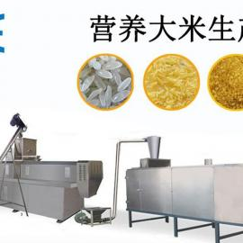 碎米渣人造大米加工机械设备