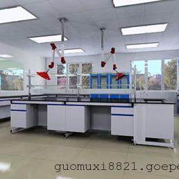 佛山中央实验台,实验室边台,化验室操作台,广州环扬专业承建