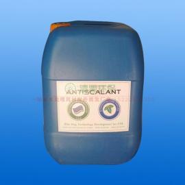 美国进口蓝旗阻垢剂 BF-106反渗透阻垢剂 批发