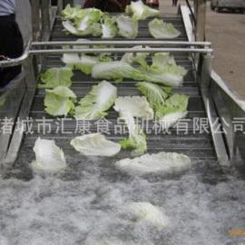 蔬菜清洗机 白菜菠菜气泡洗菜机