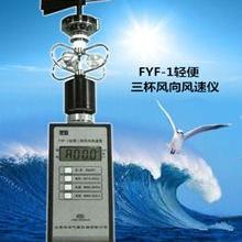 轻便三杯风向风速表FYF-1数字式风速计